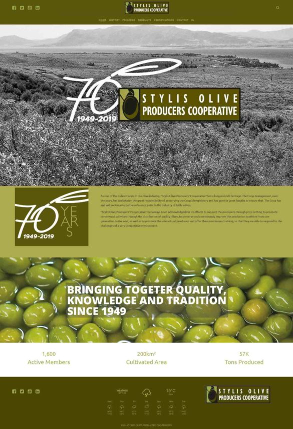 1.Argicultural Cooperative Of Olive & Olive Oil Of Stylida - Αγροτικός Ελαιουργικός Συνεταιρισμός Στυλίδας